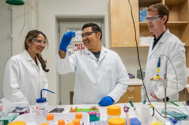 (From left) Rebecca Abergel, Abel Ricano, and Gauthier Deblonde of Berkeley Lab's Chemical Sciences Division have pioneered a faster method of purifying elements. (Credit: Marilyn Chung/Berkeley Lab)